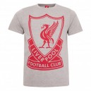 Official authentic T-shirt Liverpool, College